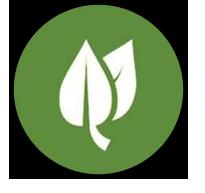 icon (4)